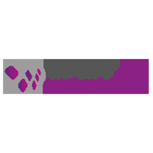 Wielink websolutions